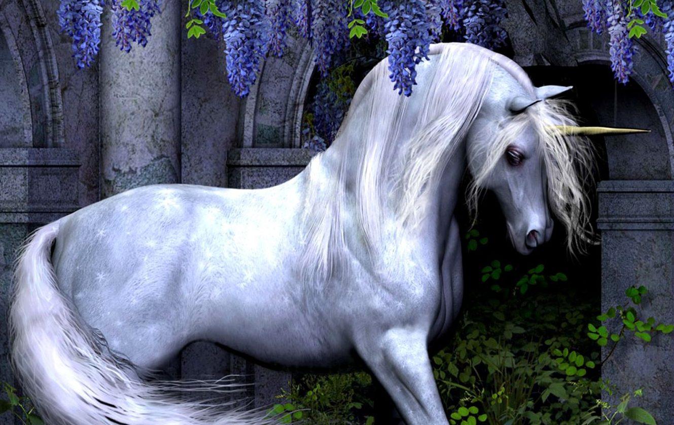 El origen de los Unicornios - Tienda de Unicornios Online